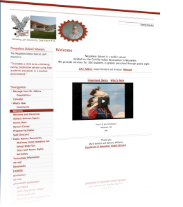 NSD Website
