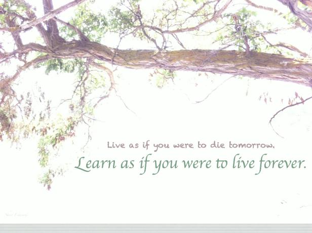 learnliveforeversre.001