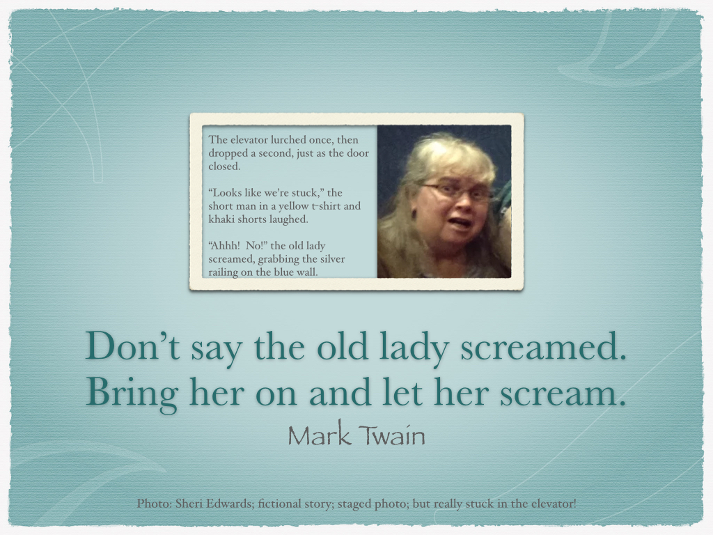 elevator_old_lady_screamed_yes.001
