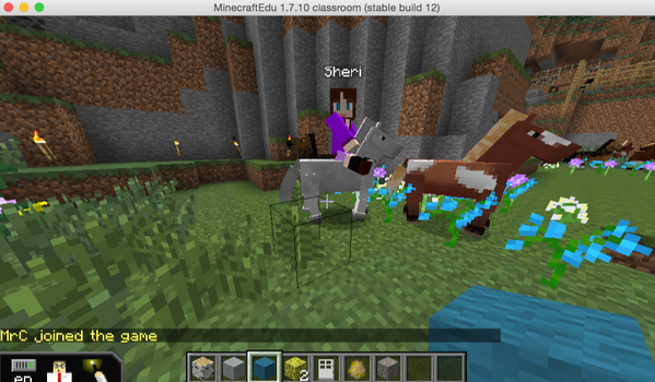 sheri_minecraft_horse