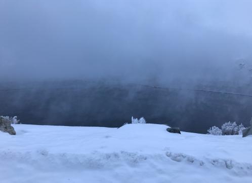 scott_fog_sc.png