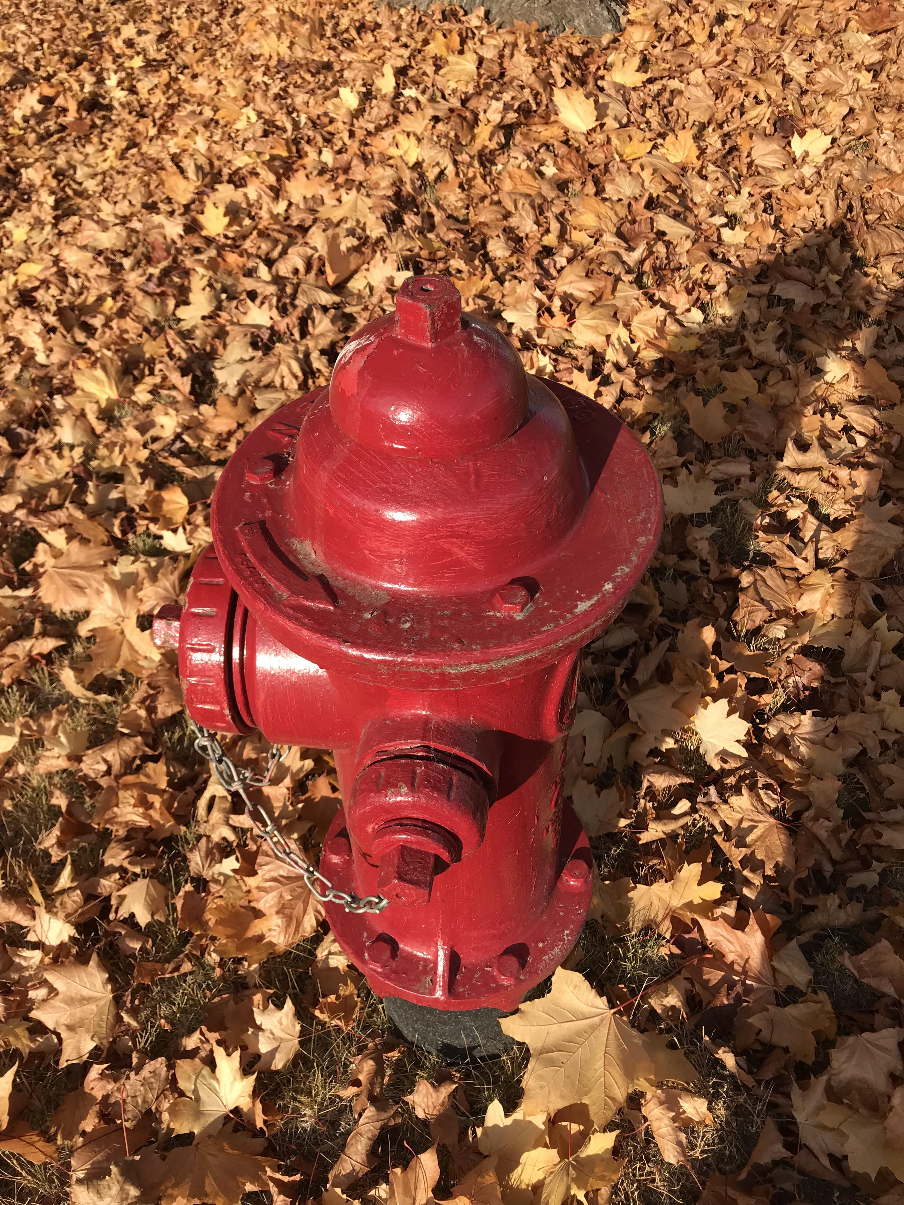 roundfirehydrant.jpg