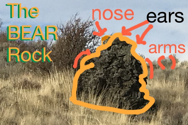 bearrock annotated.jpg