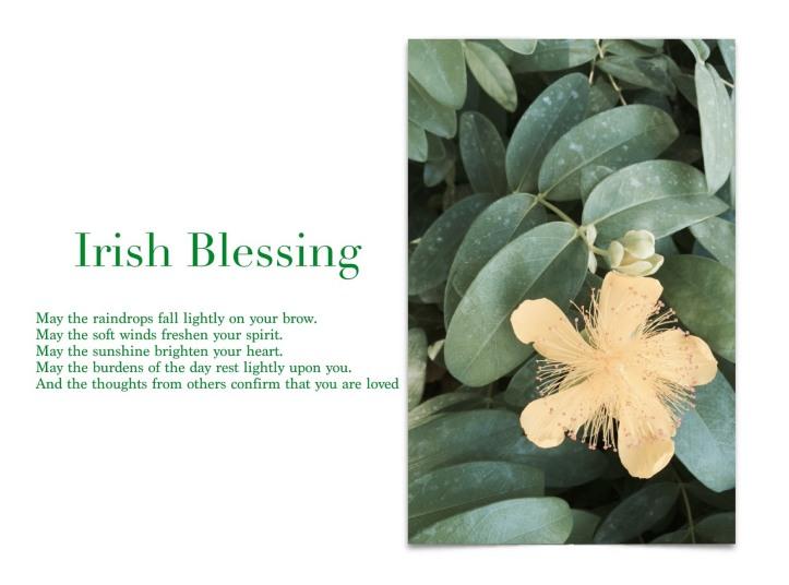 IMG_1771_irish_blessing.JPG