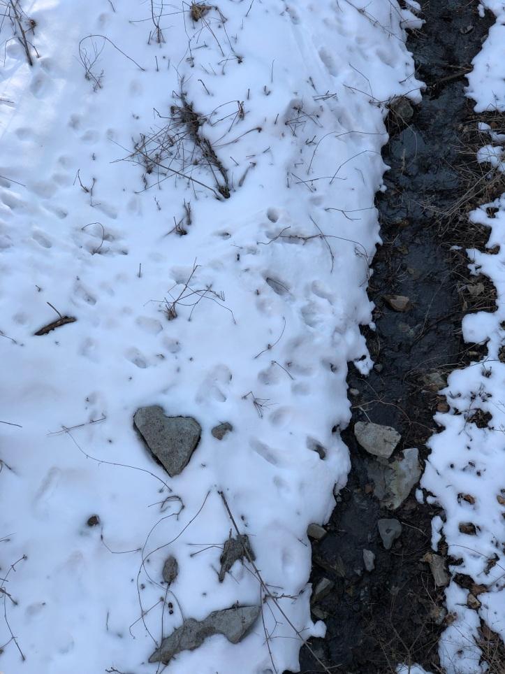 Fiddle Creek Love Rock
