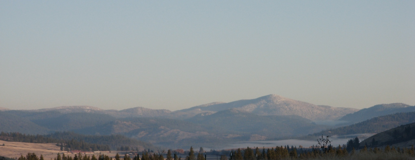 IMG_8339 moses mountain nsd.JPG