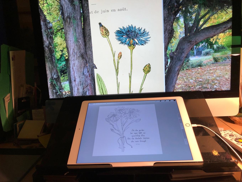 daytimer.iPad.jpg