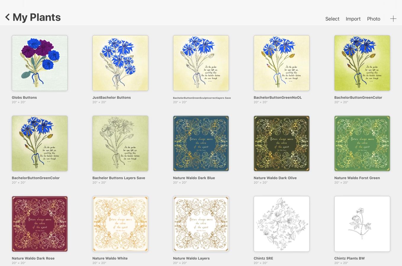 myplantsbotanicals.jpg