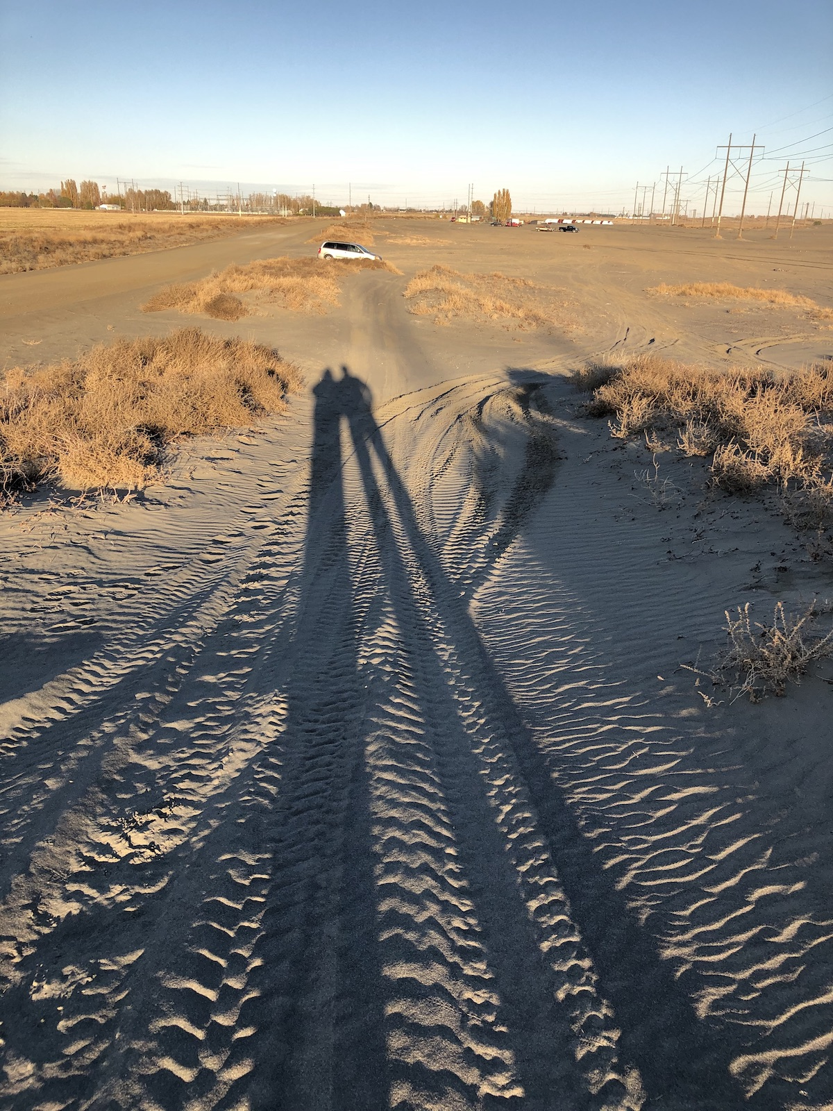 shadows sm.jpg