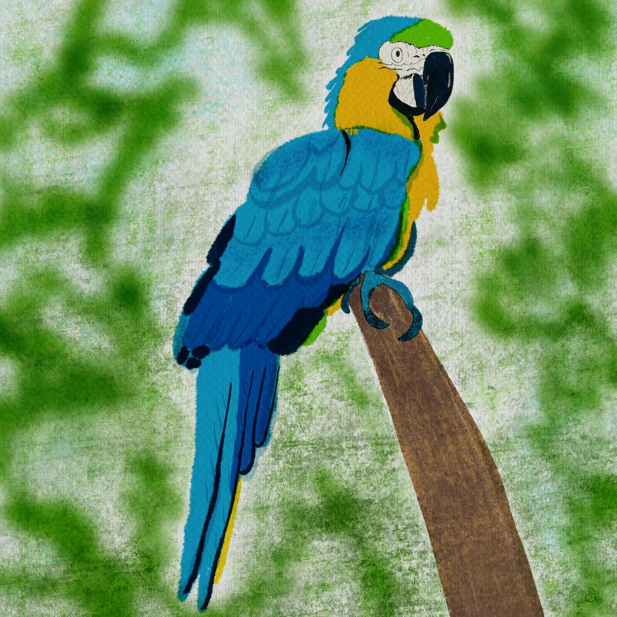 parrot.clmooc sm.png